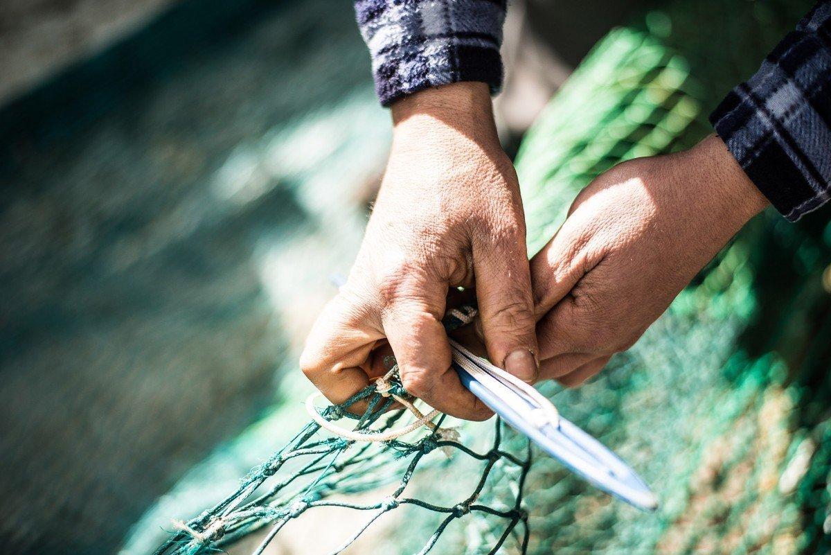 Ora Pesce è una delle prime startup in Italia specializzata nell'eCommerce dell'ittico fresco